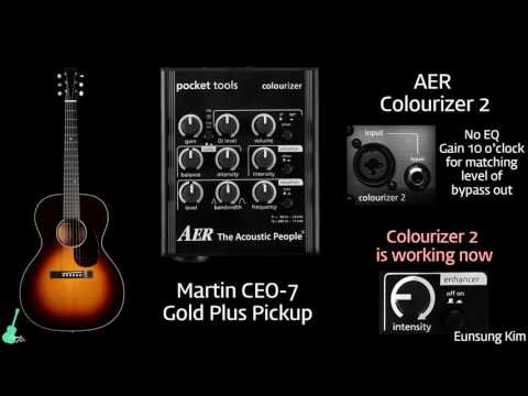 AER Colourizer 2 with Martin CEO-7 (Gold Plus Pickup)