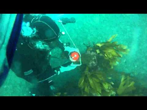DMT Club Dive Navigation - Mermaids Kitchen - 20130504 Part 1