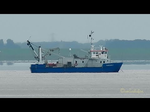 research & survey ship NAVICULA PGCT IMO 8632110 Ems Dollart Dollard Emden Delfzijl