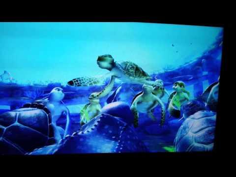 A Turtle's Tale:Sammy's Adventure -Turtle Love