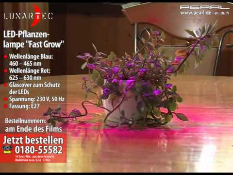 Lunartec LED-Pflanzenlampe Fast Grow /Ø 65 mm rot//blau