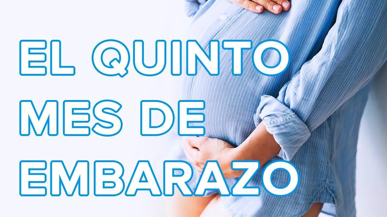 El quinto mes de embarazo | Así crece tu bebé, así cambia tu cuerpo