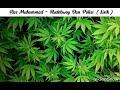 Ras Muhamad   Rudebwoy   Polisi  lirik