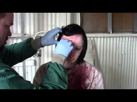 Hans Crippleton: Talk to the Hans- Behind the Scenes Part 1: The Doctor Will See You Now