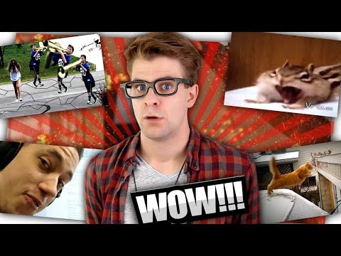 Warum gibt es sowas auf Youtube? - Zeo und das Internet!