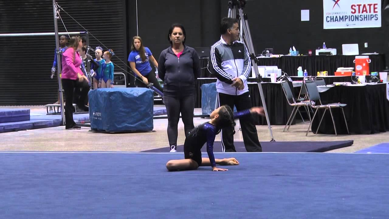usa gymnastics florida state level 3 meet 2014