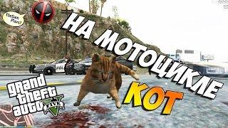 GTA 5 - Играем за КОТА НА МОТОЦИКЛЕ!! (Military Cat)