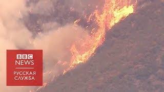 Лесной пожар в Калифорнии стал крупнейшим в истории штата