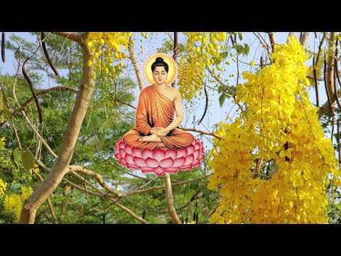 (ធម៌នមស្សការ) dhamma chanting