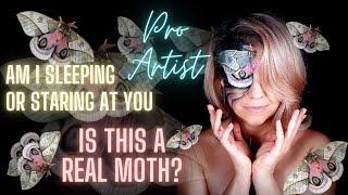 Makeup Illusion - What Landed on My Face? Facts About Butterflies and Moths