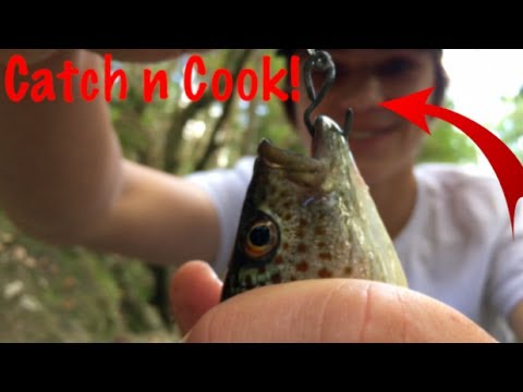 Primitive DIY fishing rod - Catch n Cook!