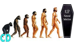 Has Human Evolution Stopped ?