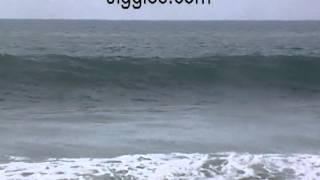 Surfing San Pancho, Surf San Pancho