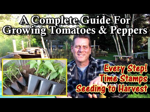 A Complete Guide for Growing Tomatoes & Peppers - Seed to Harvest: Every Step!/Table of Contents