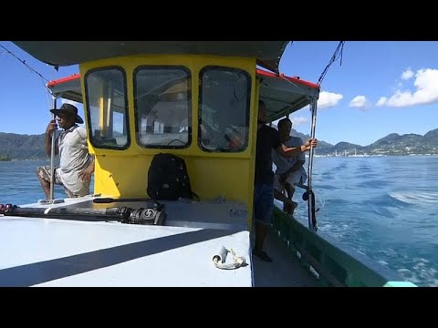 Watch: Traditional Fishing At Odds With Seychelles 'blue Economy'