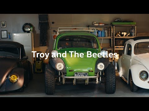 Troy and the Beetles