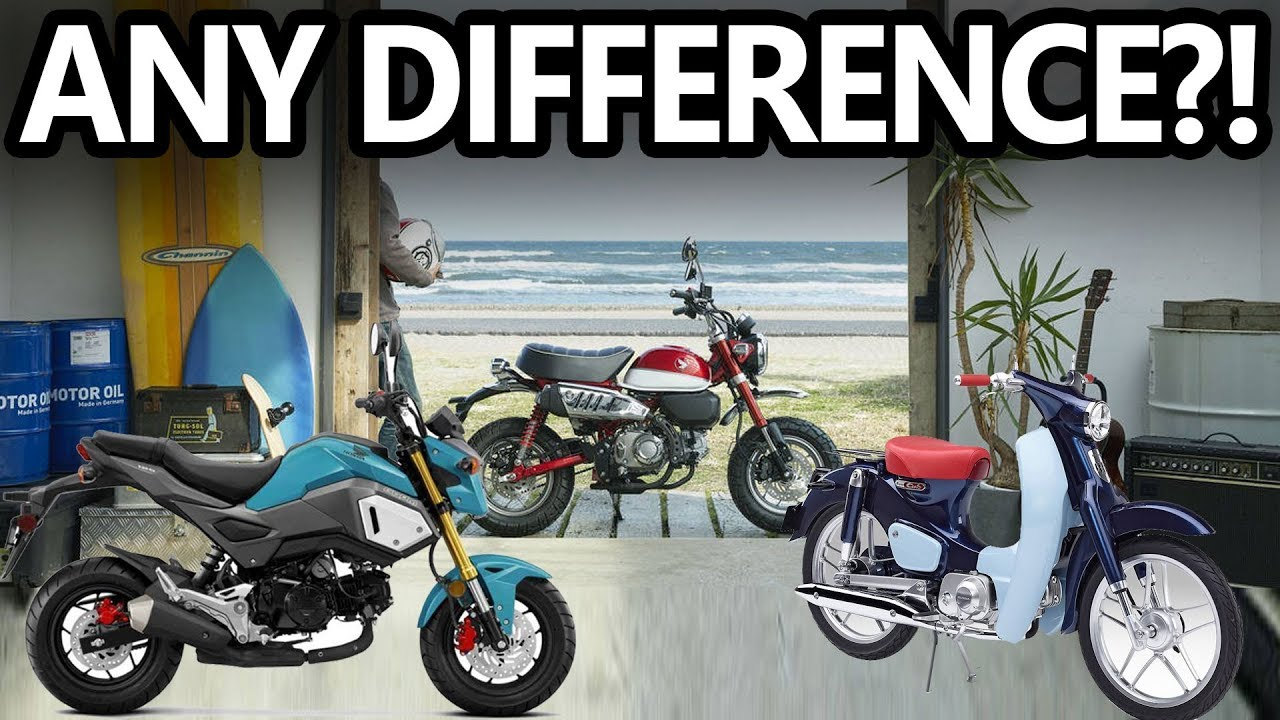 REVIEW: 2019 Honda Grom vs Monkey vs Super Cub - YouTube