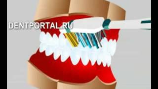 Гигиена полости рта (как чистить зубы)(Гигиена полости рта (как чистить зубы), 2008-11-11T17:11:28.000Z)