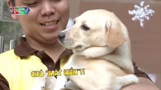 Cười ngất với dàn sao Việt phô diễn tài năng kiến thức về THÚ CƯNG khi gặp những người bạn nhỏ