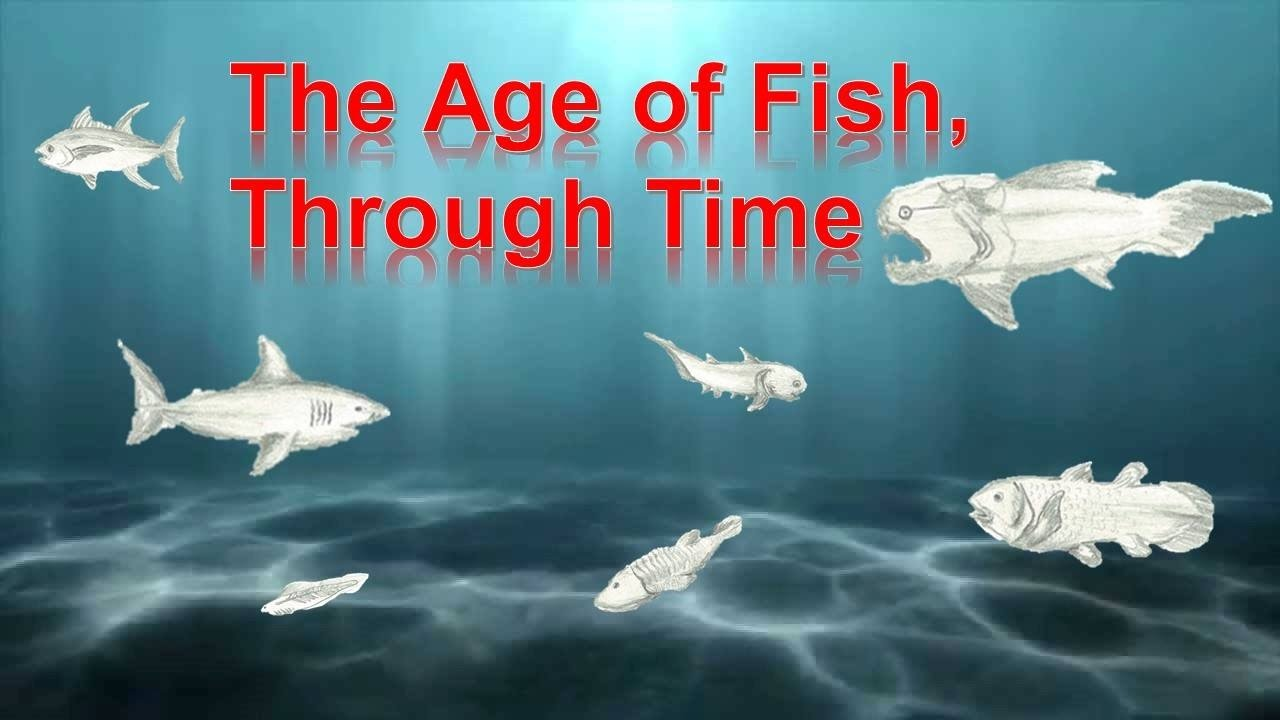 The Age of Fish