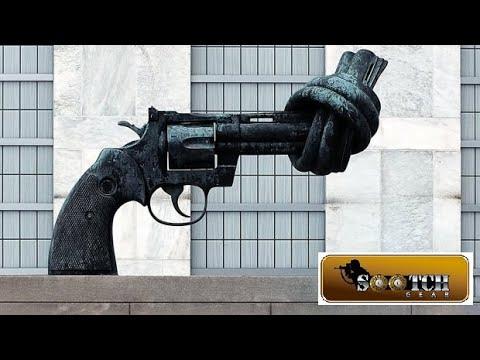 Coming Gun Control and Riots