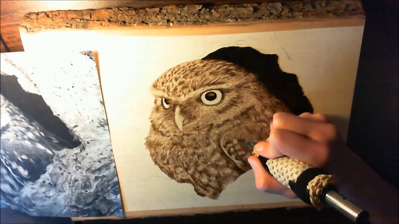 Owl Woodburning 183x Speed Progression Video Youtube