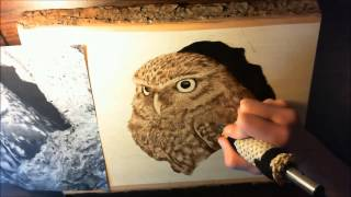 Owl - Woodburning - 183x Speed Progression Video