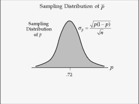 Business Statistics lecture 7 -- Sampling Distribution