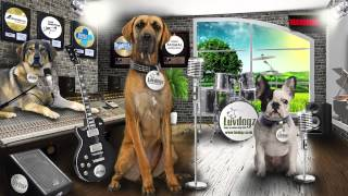 Luv Dogz Commercial