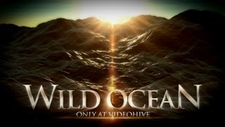Wild Ocean - After Effects Project