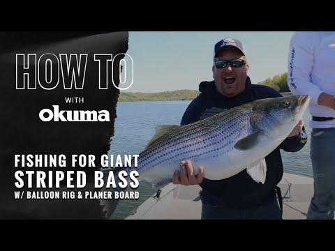 Okuma How To-  Fishing For Giant Striped Bass With Balloon Rig And Planer Board