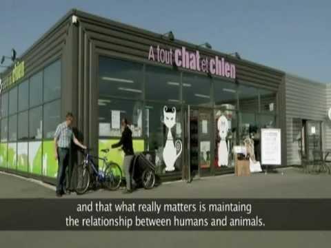 pr sentation des magasins a tout chat et chien et de l 39 cole du chien youtube. Black Bedroom Furniture Sets. Home Design Ideas