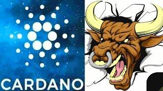 ADA Bullrun Cardano King Cryptocurrency Prepares To Ride Bitcoins Wave