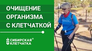 Сибирская клетчатка. Очищение организма и контроль веса