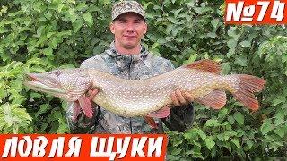 Такую рыбалку не забудешь! Ловля щуки осенью на спиннинг