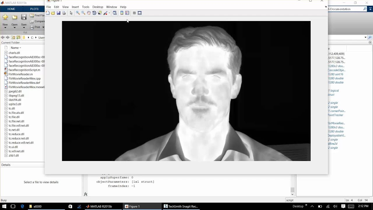 FLIR Thermal Face Detection and Tracking in Matlab
