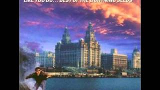 The Lightning seeds- Marvellous