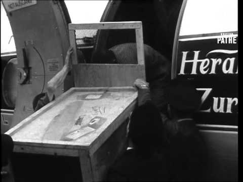 Lion Cubs Loose (1966)