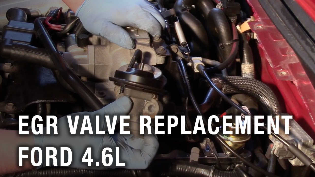 hight resolution of egr valve replacement ford 4 6l