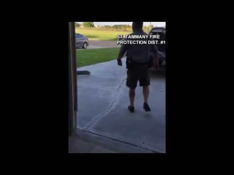 Alligator handcuffed in Louisiana