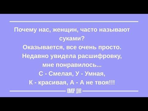 ЖЕНСКИЙ ЮМОР на каждый день ПОДБОРКА 8 ЮМОР ДНЯ