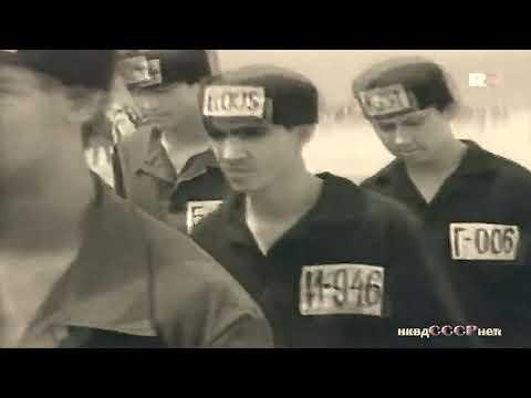 Людоед — фильм 1991 года режиссёр Г.Земеля. 2 серии HD