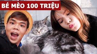Dẫn bạn gái đi Pęt Cafe phát hiện bé mèo 100 triệu (Oops Banana V10g #98)