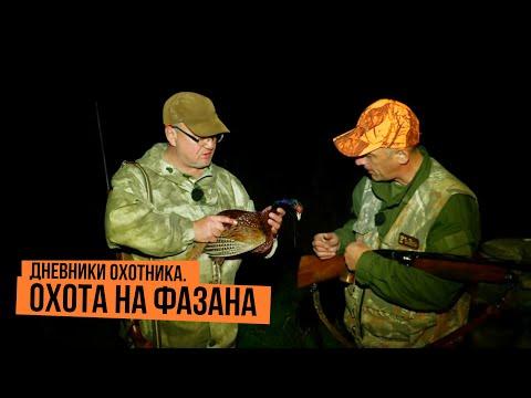 Дневники охотника. Охота на фазана