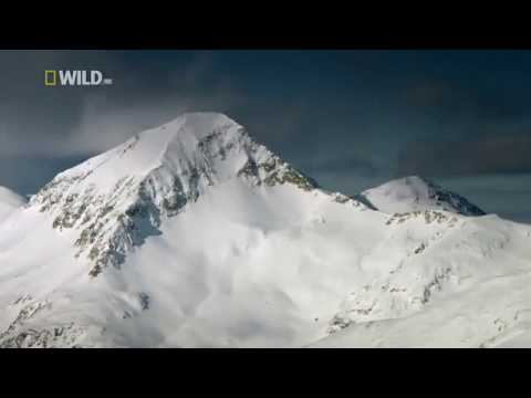National Geographic Wild ~ WildLife in the Balkans