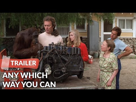 Any Which Way You Can 1980   Clint Eastwood