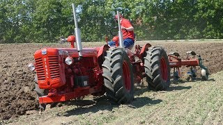 Tandem Tractors Working in The Field at Ferguson Days | Bukh, Ferguson & MF | DK Agri