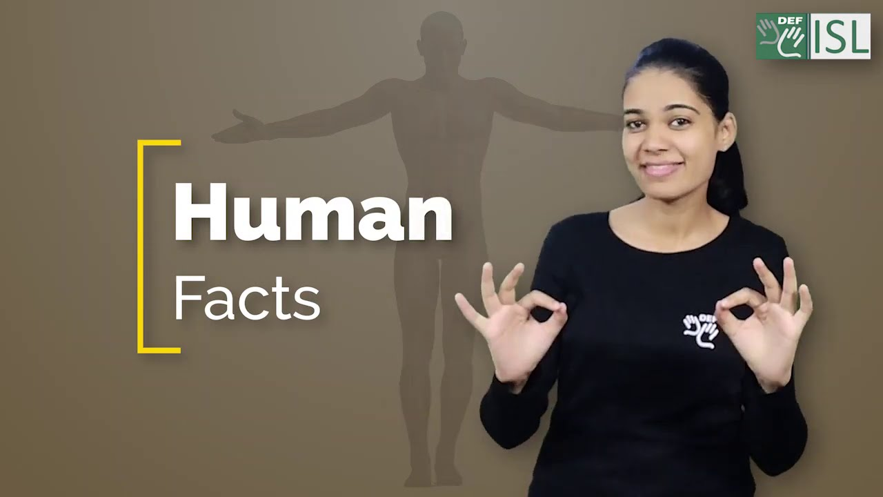 Interesting to know about Human Facts