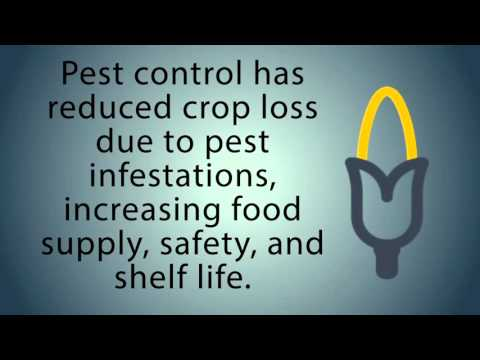 The Value of Pest Management and Pest Control