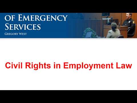 Legal 08 - Civil Rights in Employment Law